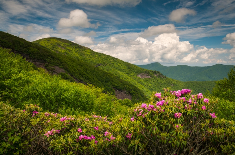 Ophthalmologist Wanted for North Carolina Mountains Practice