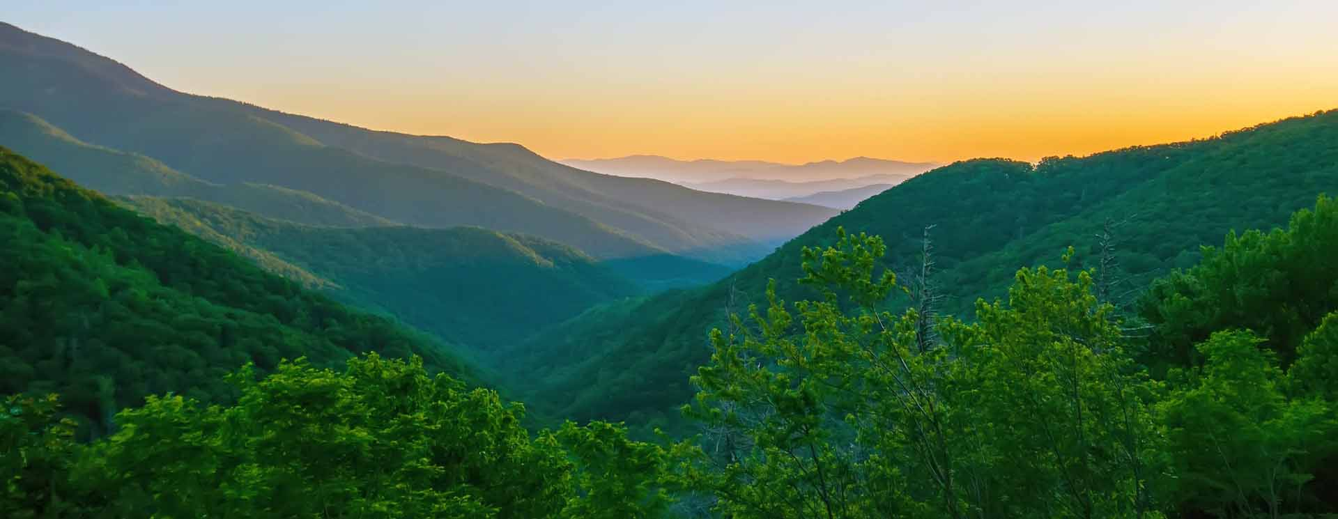 Tennessee - Cataracts / General / Comprehensive Ophthalmologist